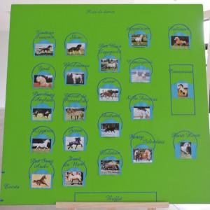 réalisation de plans de table personnalisés pour mariages, anniversaires...dans le Nord et la Belgique